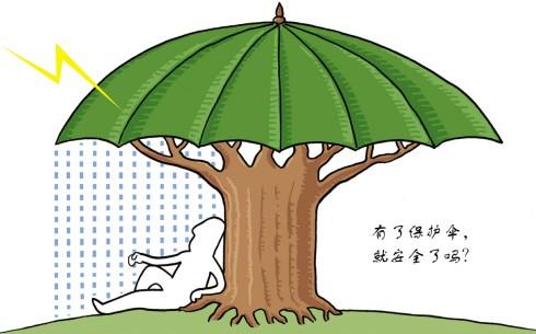 """不少创业者都希望寻觅一颗大树,借光经营,把""""大树""""当做""""保护伞""""."""